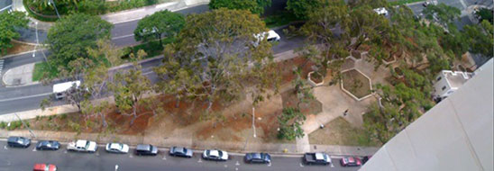 Kamaliʻi Park birds-eye view